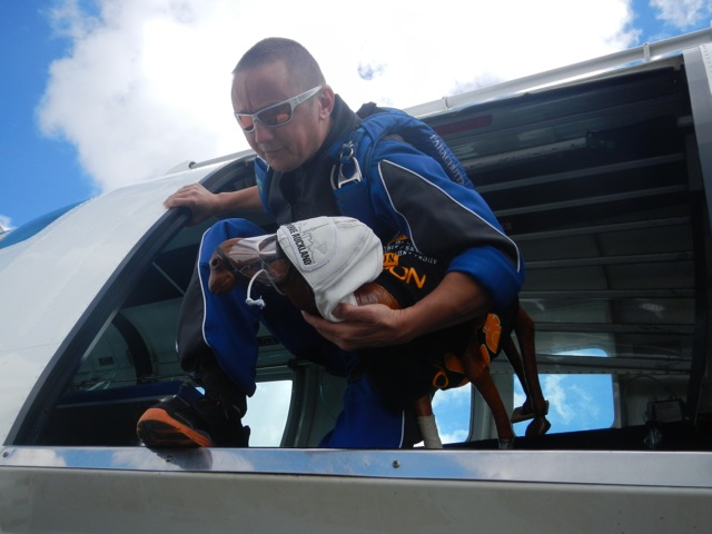 Clarence At Skydive Auckland