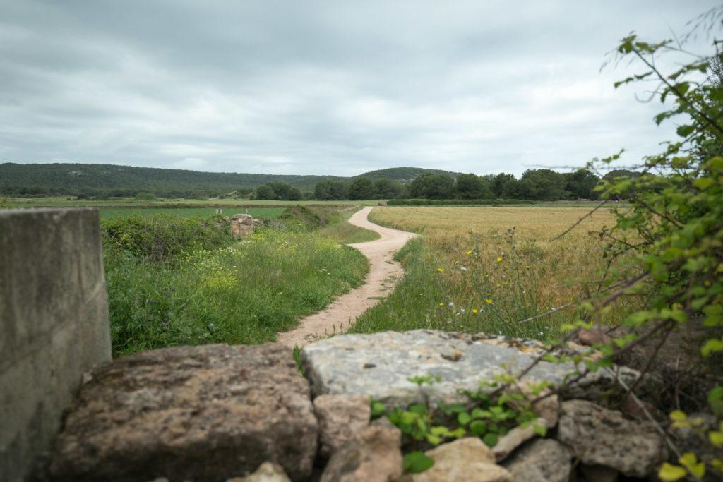 fields-mountain-biking