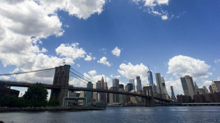 Seeing The Bigger Picture In New York with Pixter's Wide Angle Pro Lens